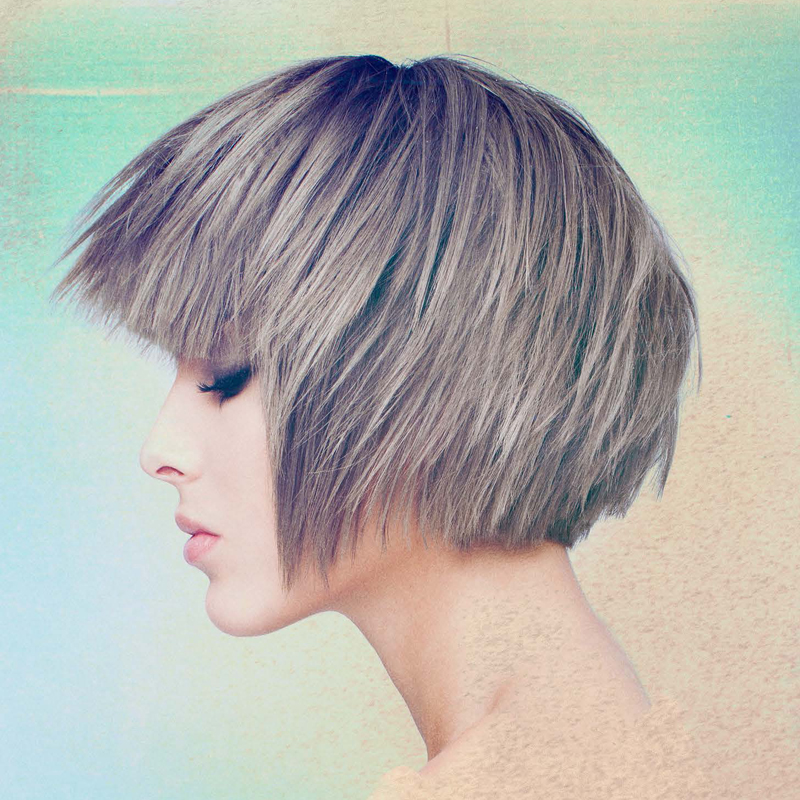 ShirleyG: The Wig Collection - Silver Fox